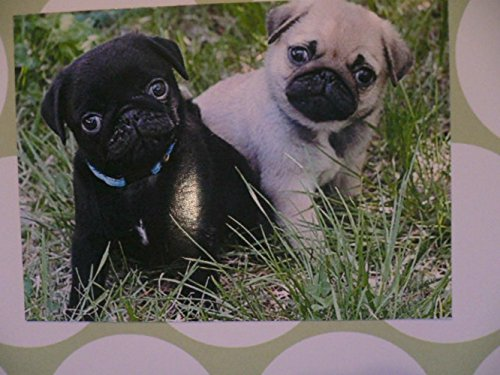 handmade pug dog greeting card happy holidays  birthday
