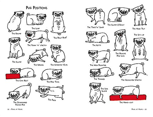 a pugs dating